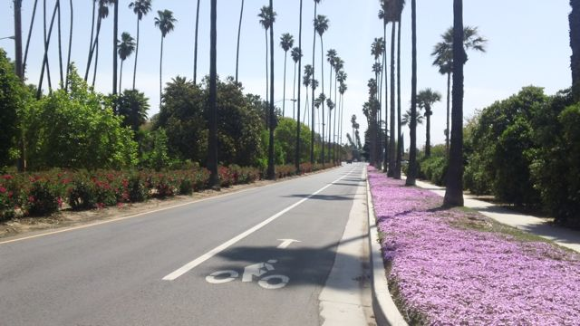 Riverside, California | City of Arts & Innovation | Bicycle