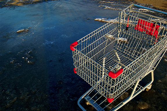shopping cart abandoned in lake