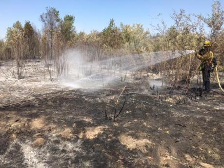 firefighters working vegetation fire in river bottom